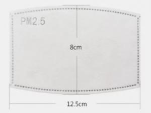 Atywny wymienny filtr węglowy PM 2,5